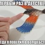 Знаменитая балансирующая птица