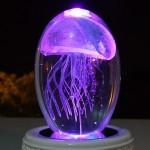 Кристаллический шар с медузой