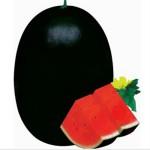 Гигантский арбуз семена